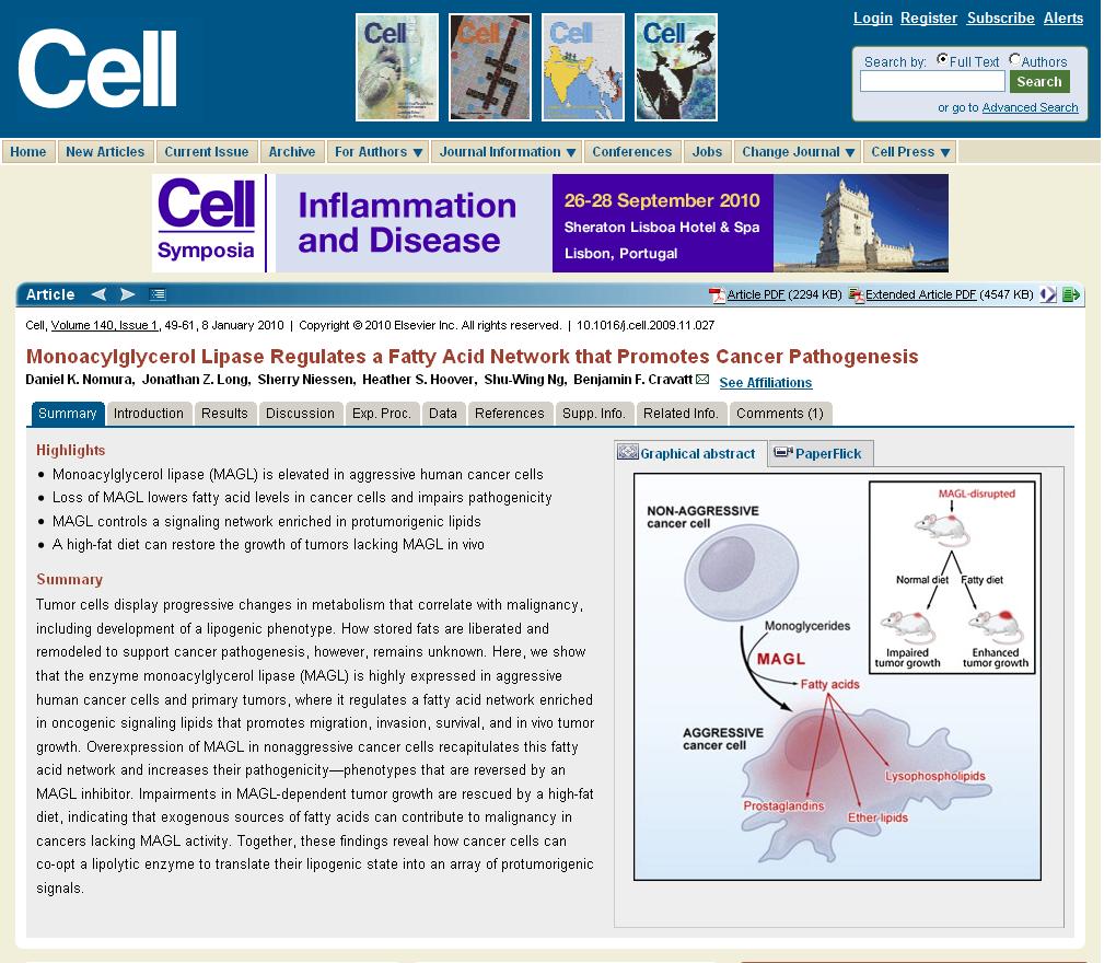 CellArticleFormat