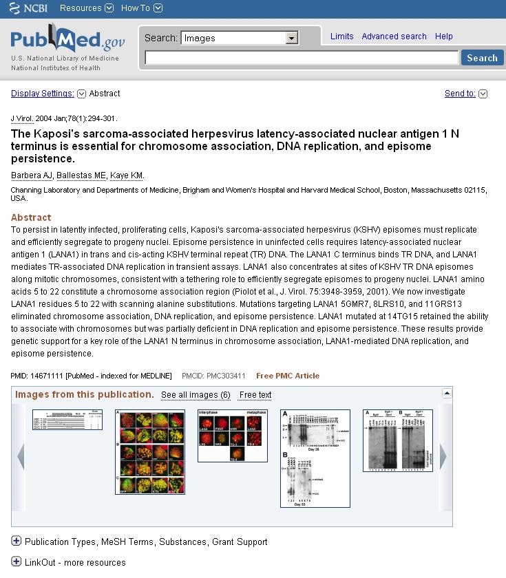 NCBI Images