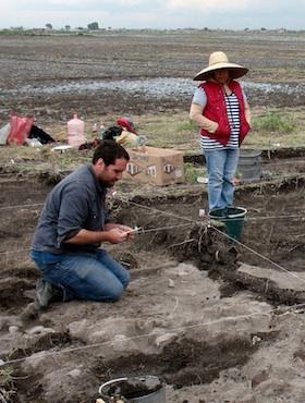 NG4 Shrine Site 2012 - emerging skulls