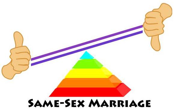 Same-Sex Marriage Attitudes - Image